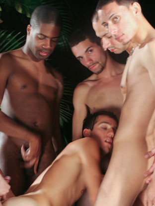 Gay Parties : interacial Campus cocks!